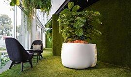 Stitch Plant Pot Collection Plant Pots Plant Pot Idea
